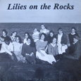 Tigerlilies/Lilies on the Rocks